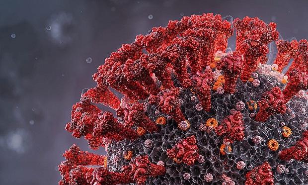 Balance mundial de la pandemia de covid-19 el 20 de septiembre a las 10 horas