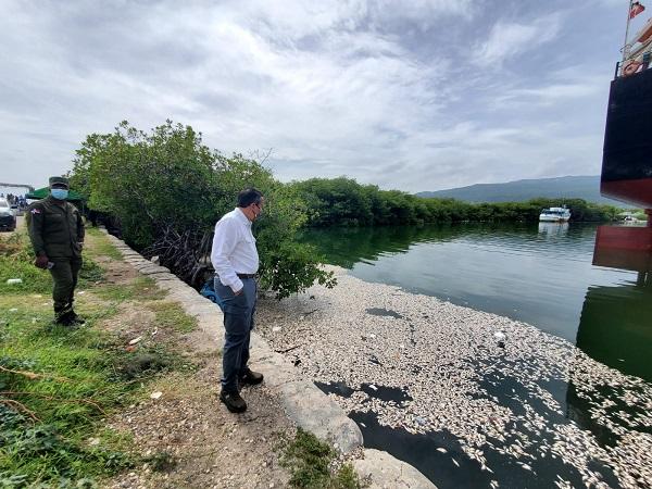 Medio Ambiente presenta informe sobre mortandad de peces registrada en Barahona